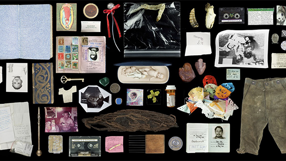 Kija Lucas: The Museum of Sentimental Taxonomy