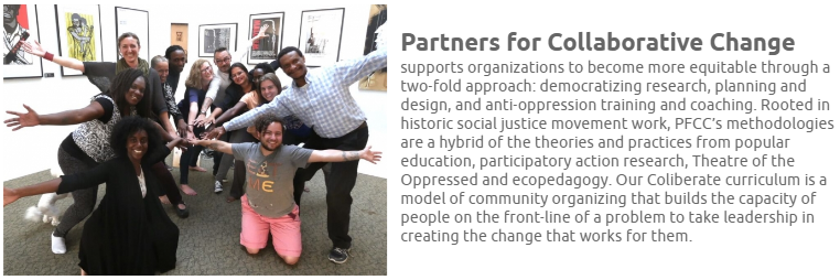 Partners for Collaborative Change Bio and Image